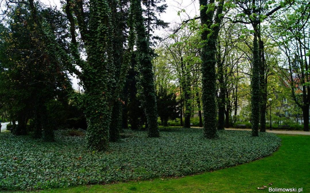 Park Dreszera