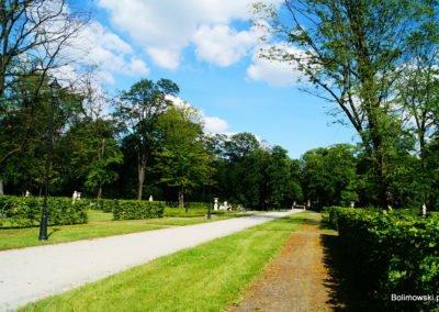 Park miejski w Skierniewicach