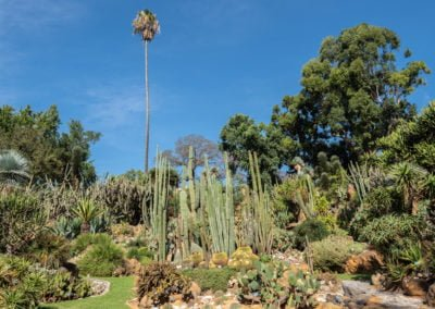 Ogród botaniczny w Neapolu