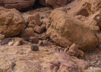 Czerwony kanion, Izrael