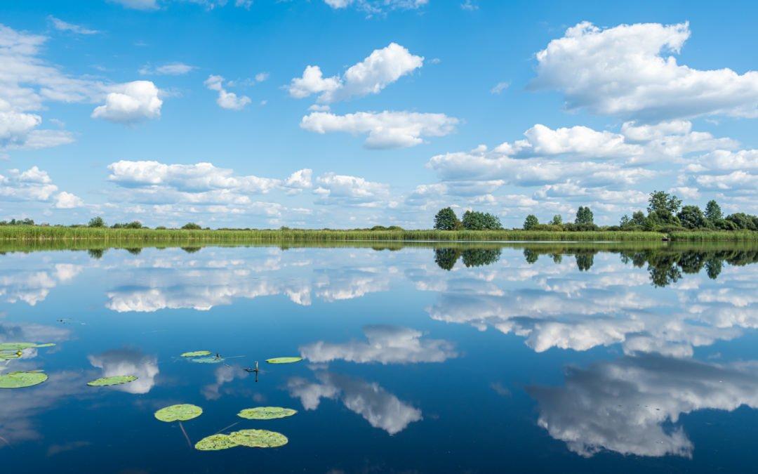 Polesie – atrakcje parku iokolic